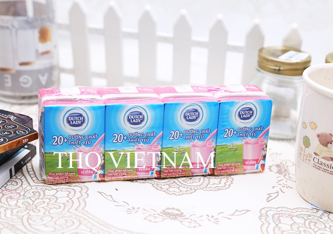 [THQ VIETNAM ] Dutch Lady UHT Milk Straw berry Flavor 110ml*48 boxes