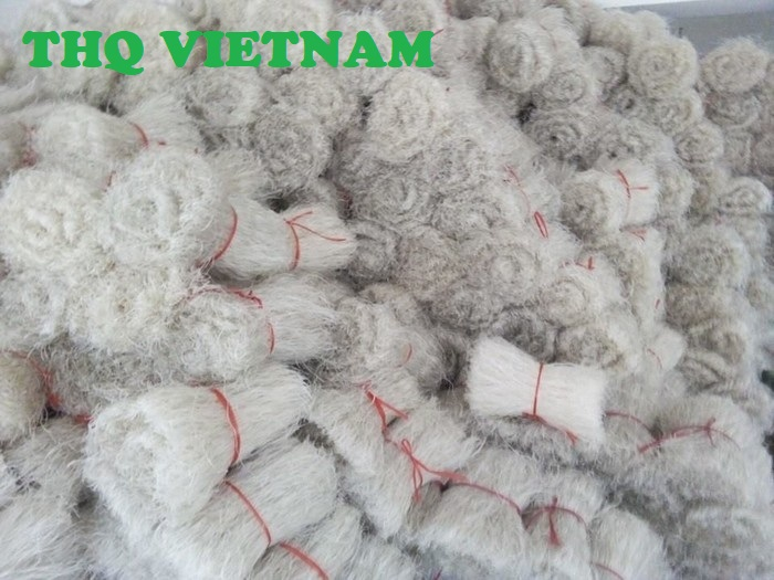 http://www.thqvietnam.com/upload/files/mien%20dong%20binh%20lieu%20qn%201.jpg