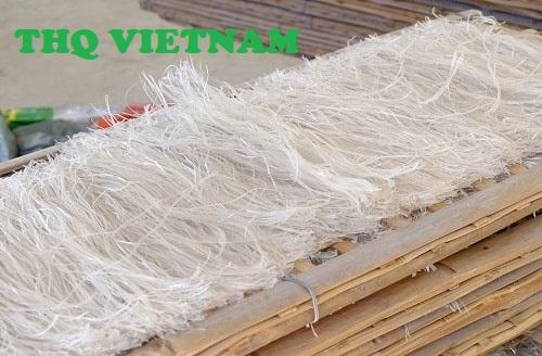 http://www.thqvietnam.com/upload/files/mien%20dong%20binh%20lieu%20qn.jpg